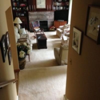 Half Acre Country Setting for sale - High Rock - Staten Island New York